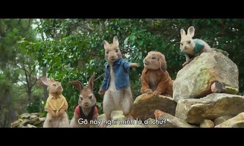 Peter Rabbit (Thỏ Peter)