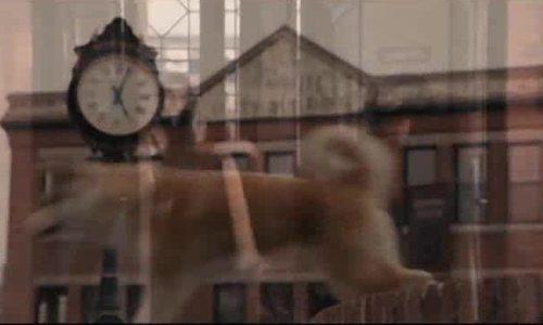 "Trailer ""Hachi: A dog's tale"""