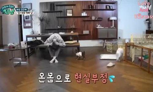 Hình ảnh hài hước của Yoon Eun Hye khi thú cưng 'vượt rào'
