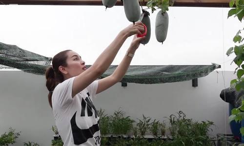 Hoa hậu Phương Lê trồng rau, nuôi gà vịt ở biệt thự nghìn mét vuông