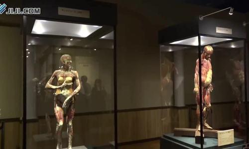 Triển lãm cơ thể người ở Nhật Bản