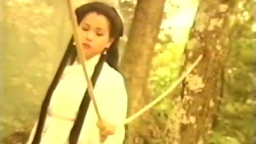 MV 'Cánh chim cuối trời' (nhạc phim 'Thần điêu đại hiệp') - Lam Trường và Minh Tuyết