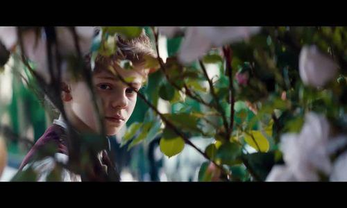 Tác phẩm kinh điển 'Không gia đình' được chuyển thể thành phim