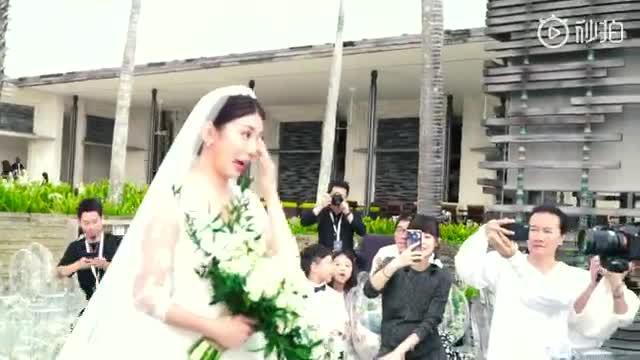 Giả Tịnh Văn đám cưới