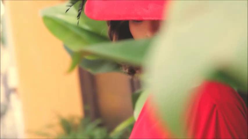Nguyễn Hồng Nhung tạo dáng với váy