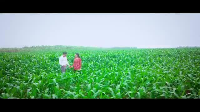 MV Yêu lắm Thái Bình ơi của Xuân Hảo