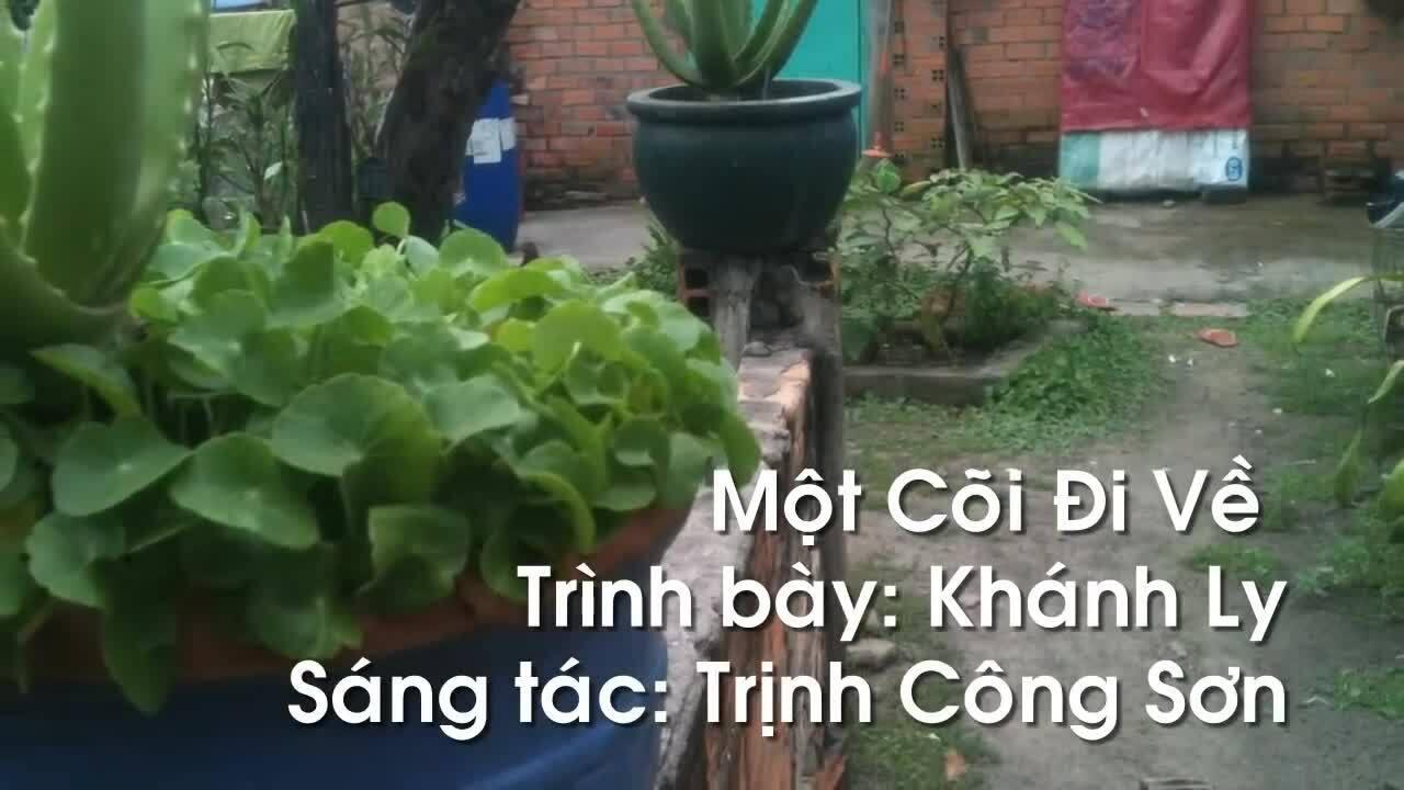 """Khánh Ly hát """"Một cõi đi về"""""""
