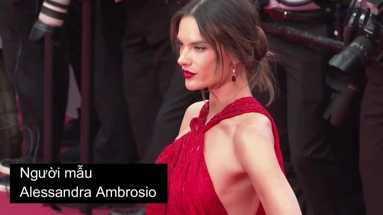 Thảm đỏ Cannes 2019 ngày hai