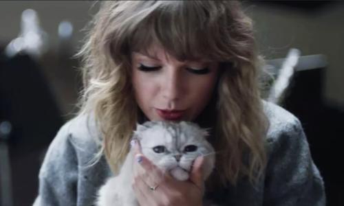 Khoảnh khắc Taylor Swift và các chú mèo