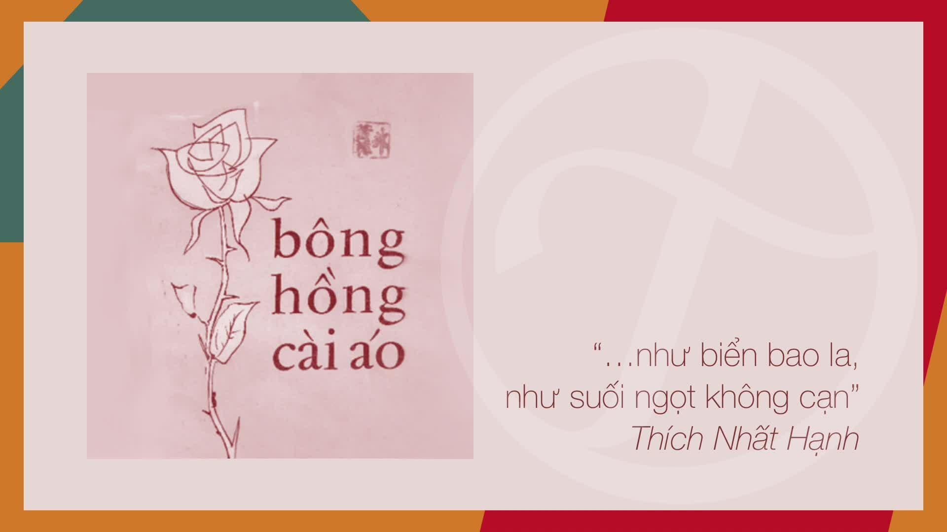 Đức Tuấn hát 'Bông hồng cài áo'