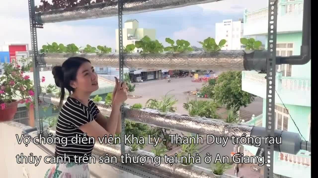 Vườn rau quả tự trồng của các sao Việt