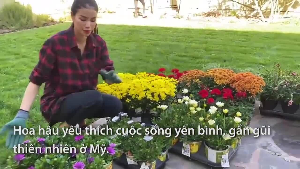 Cuộc sống Phạm Hương ở Mỹ