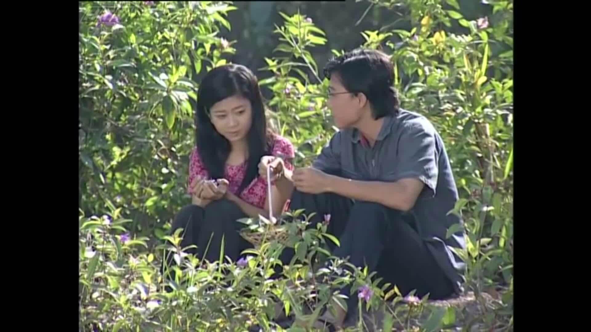 Các vai diễn phim ảnh nổi bật của Mai Phương