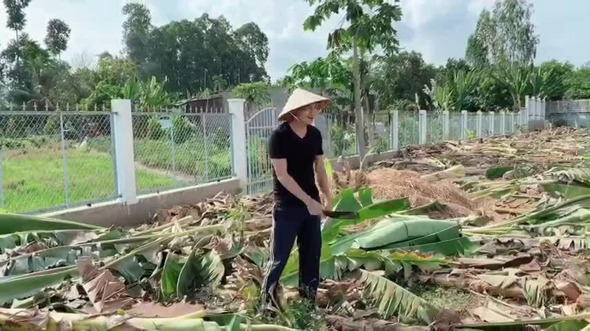Minh Luân cải tạovườn 2.000 m2