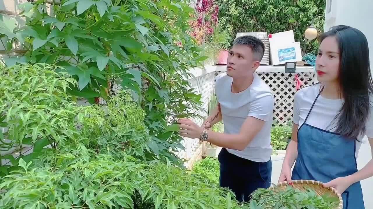 Thủy Tiên trồng nấm, thảo dược trong vườn nhà