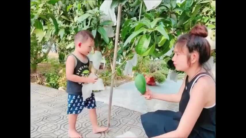 Lý Hải, Minh Hà đưa con về quê hái trái