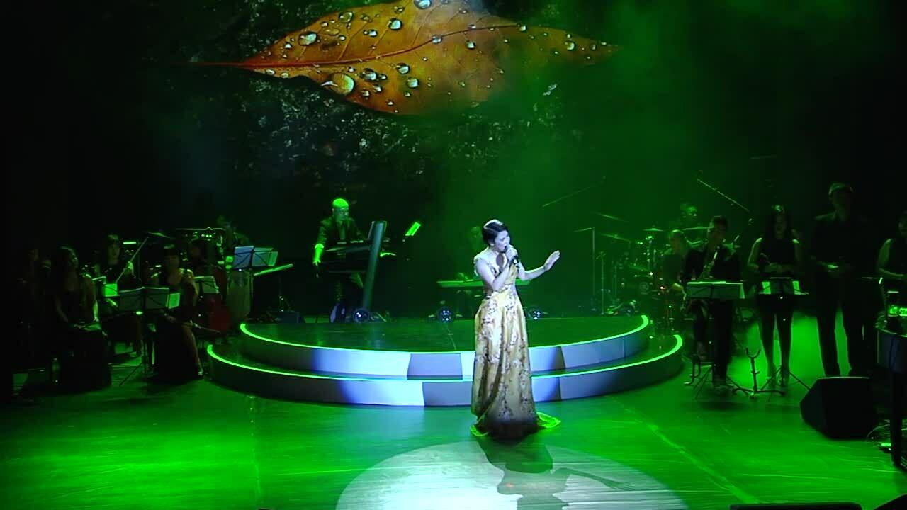 Thu Phương hát 'Có phải em mùa thu Hà Nội' ở liveshow năm 2013