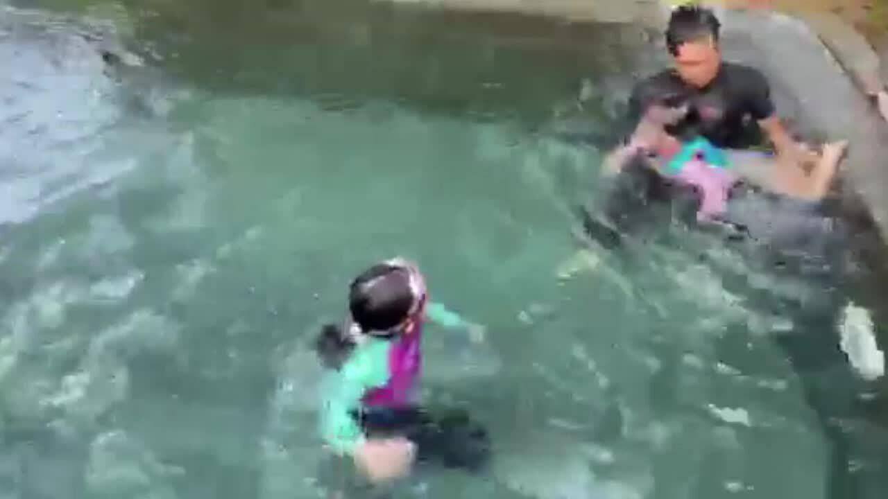Sao Việt dạy con bơi