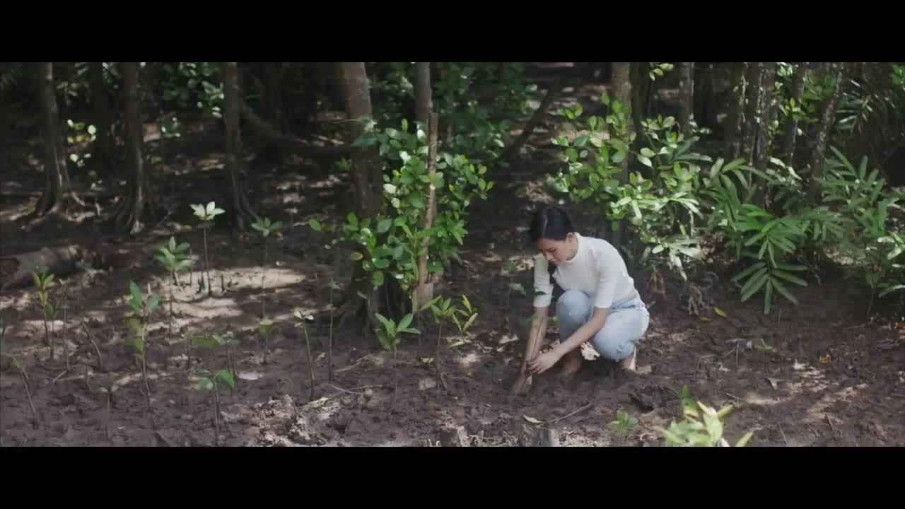 Thái Thị Hoa Miss Earth 2020 Eco Video