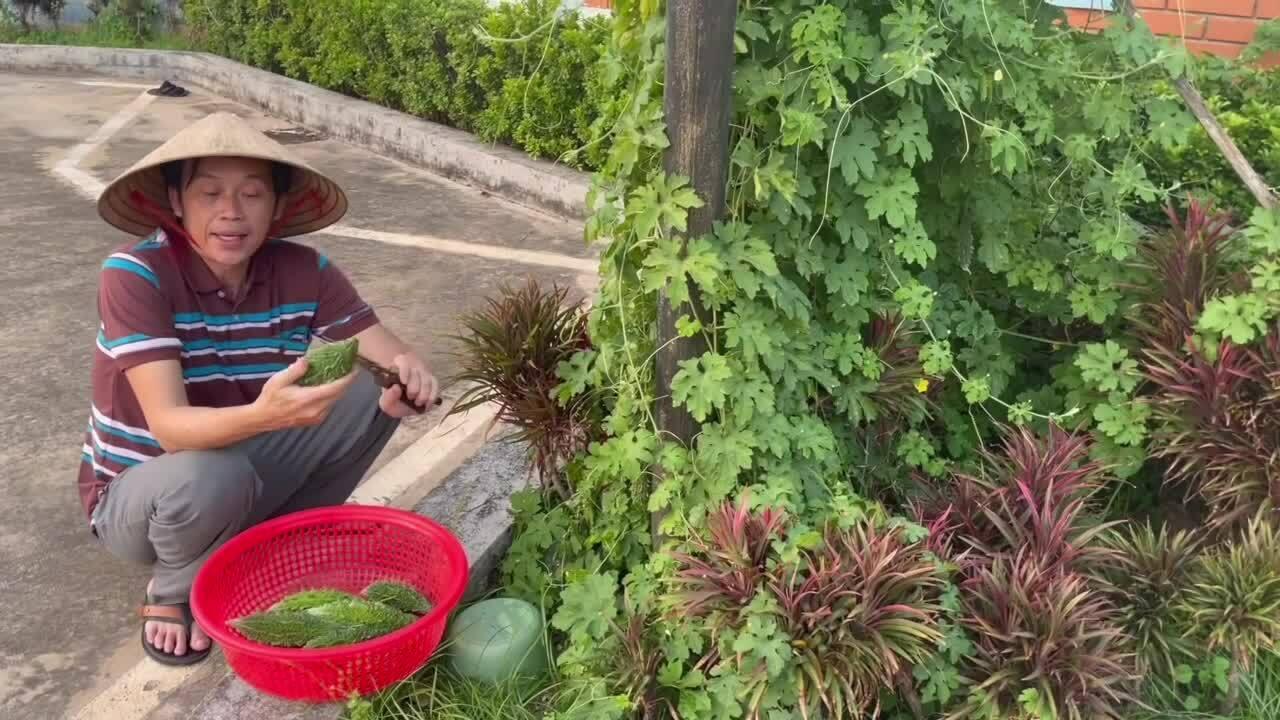 Hoài Linh thu hoạch rau quả