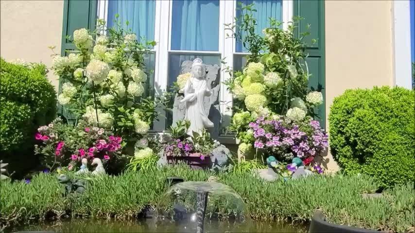 Vườn hoa của nghệ sĩ Phương Hồng Thủy
