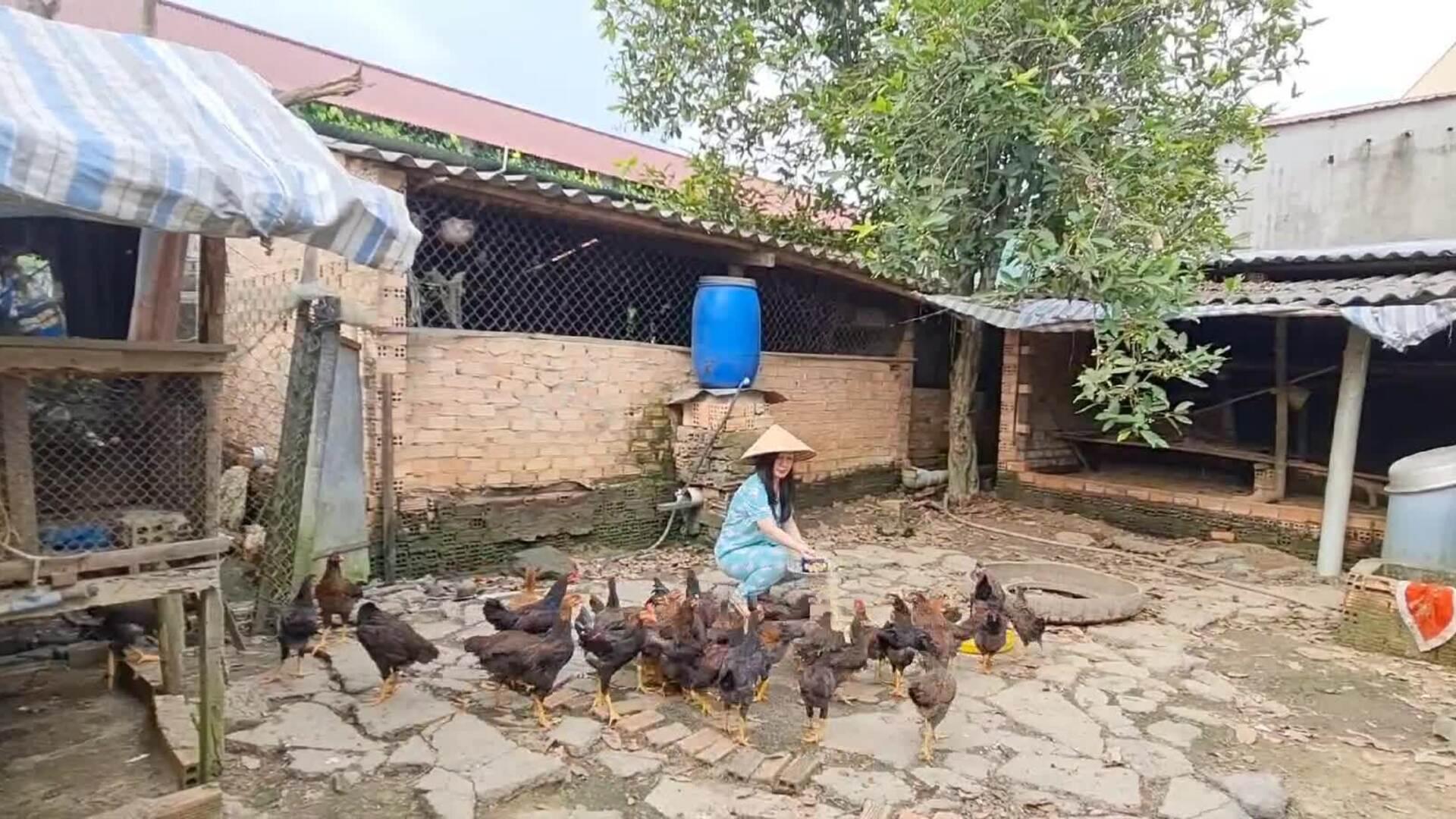 Hà Vân về quê đỡ heo đẻ, nuôi gà, thỏ