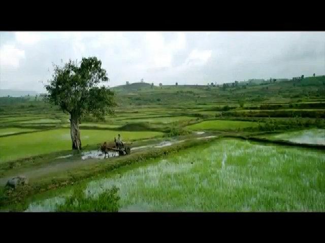 Trailer hậu trường 'Tôi thấy hoa vàng trên cỏ xanh'