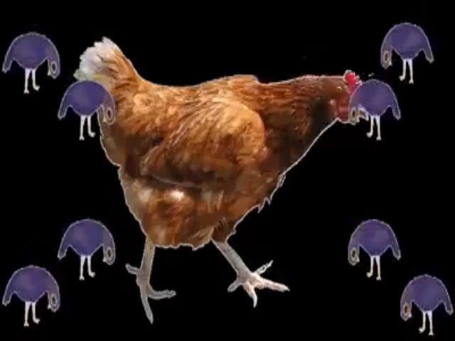 Clip chế từ 'chú chim màu tím' gây sốt 6
