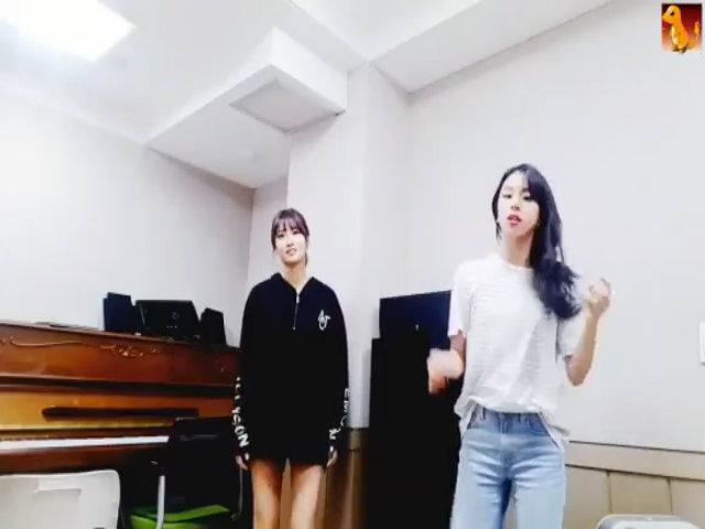 Momo và Chae Young nhảy bài thi căn bản ở JYP