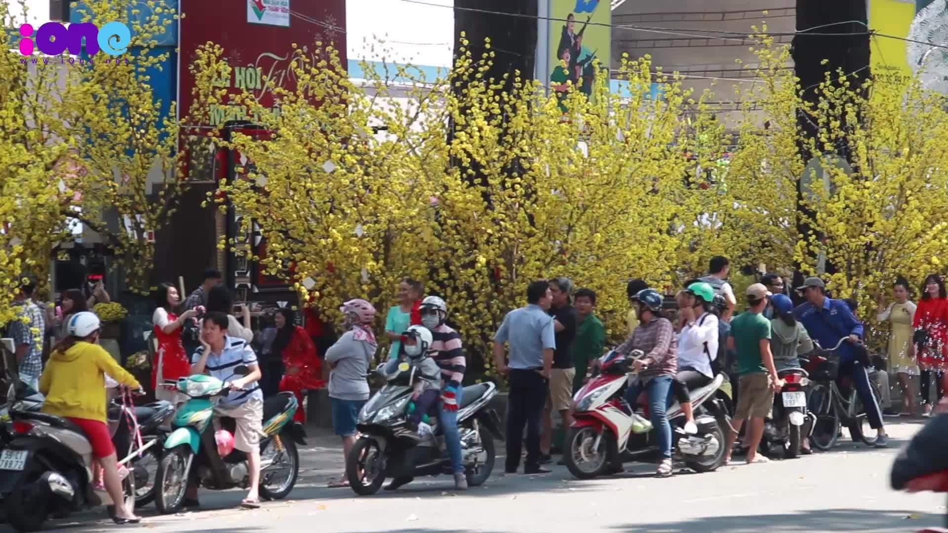 Giới trẻ Sài Gòn xúng xinh pose hình ở phố xuân