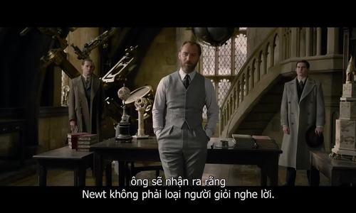 Ngỡ ngàng trước diện mạo thời trẻ của thầy Dumbledore trong 'Harry Potter'