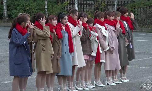 Netizen tranh cãi visual của IZONE: 'Won Young - Sakura: ai đẹp hơn?'