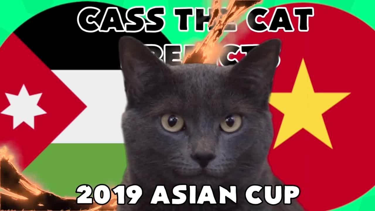 Mèo tiên tri nước Anh đưa ra dự báo đáng lo ngại cho trận Việt Nam - Jordan