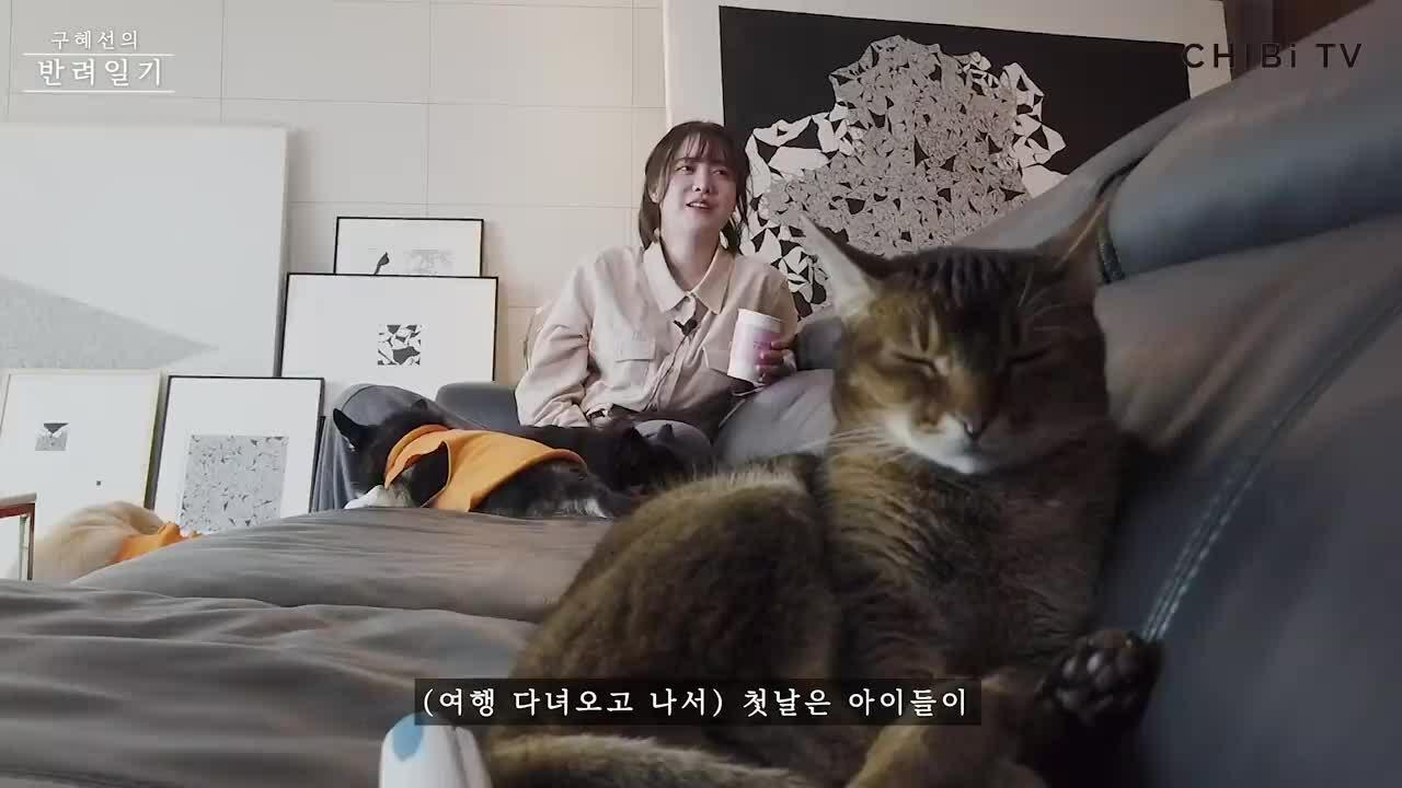 Những dấu hiệu rạn nứt 'rõ như ban ngày' của cặp Goo Hye Sun - Ahn Jae Hyun