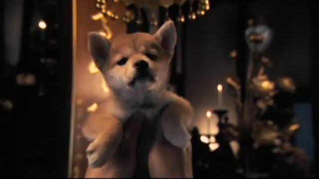 Hachi: A Dog's Tale Trailer