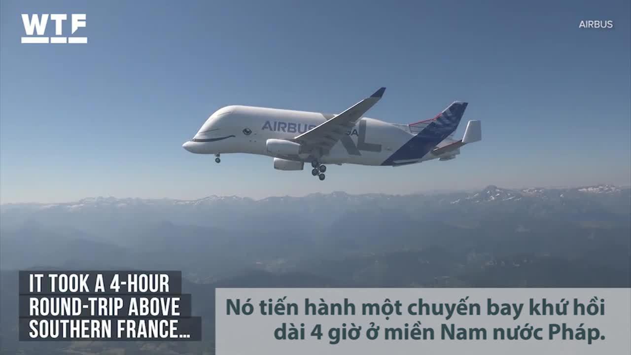 Airbus chế tạo 'Cá voi bay' khổng lồ
