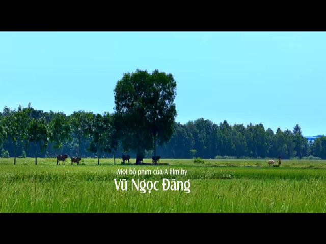 Trailer phim 'Khi con là nhà'
