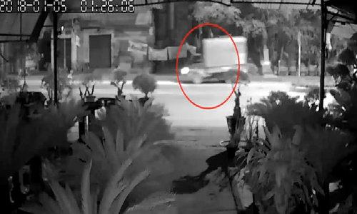 Lái xe tải đi trộm cây cảnh, tông người đàn ông trọng thương