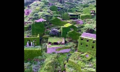 Ngôi làng hoang cỏ mọc xanh ở Trung Quốc