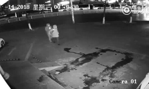 Vô tình ném gạch vào đầu đồng bọn khi đang phá cửa đi ăn trộm