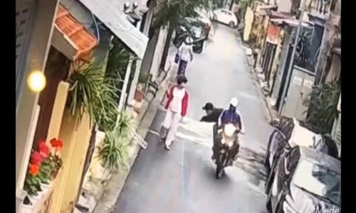 Hai thanh niên cướp chó ngay trên tay chủ giữa phố Hà Nội