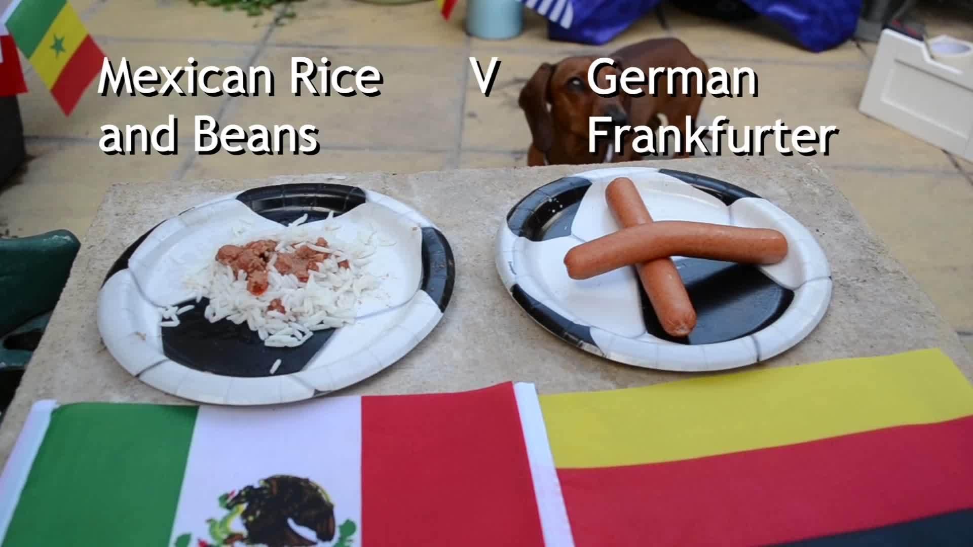 Chó tiên đoán Đức thắng Mexico hai bàn