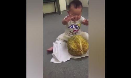 Bé trai bối rối khi lần đầu nhìn thấy trái sầu riêng