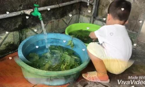 Bé trai gần 2 tuổi 'gây sốt' vì rửa rau thuần thục