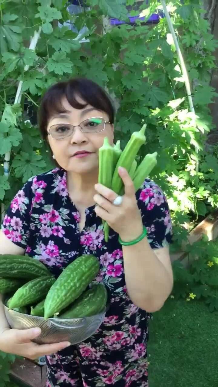 Vườn rau trái của vợ chồng ca sĩ Hương Lan