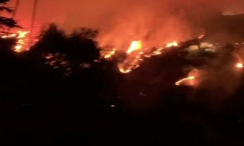 Đạo diễn Hollywood quay cảnh đám cháy tiệm cận nhà