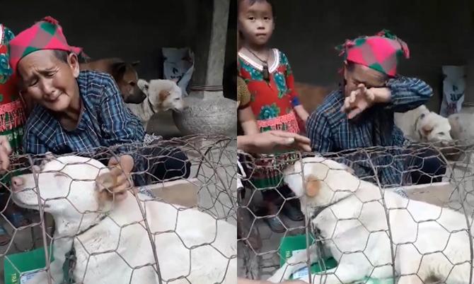 Cụ bà vùng cao khóc nức nở khi bán chó