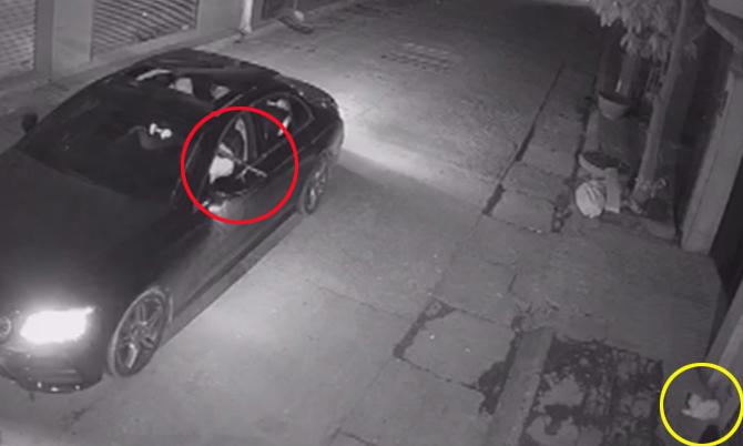 Đi Mercedes bắt trộm mèo