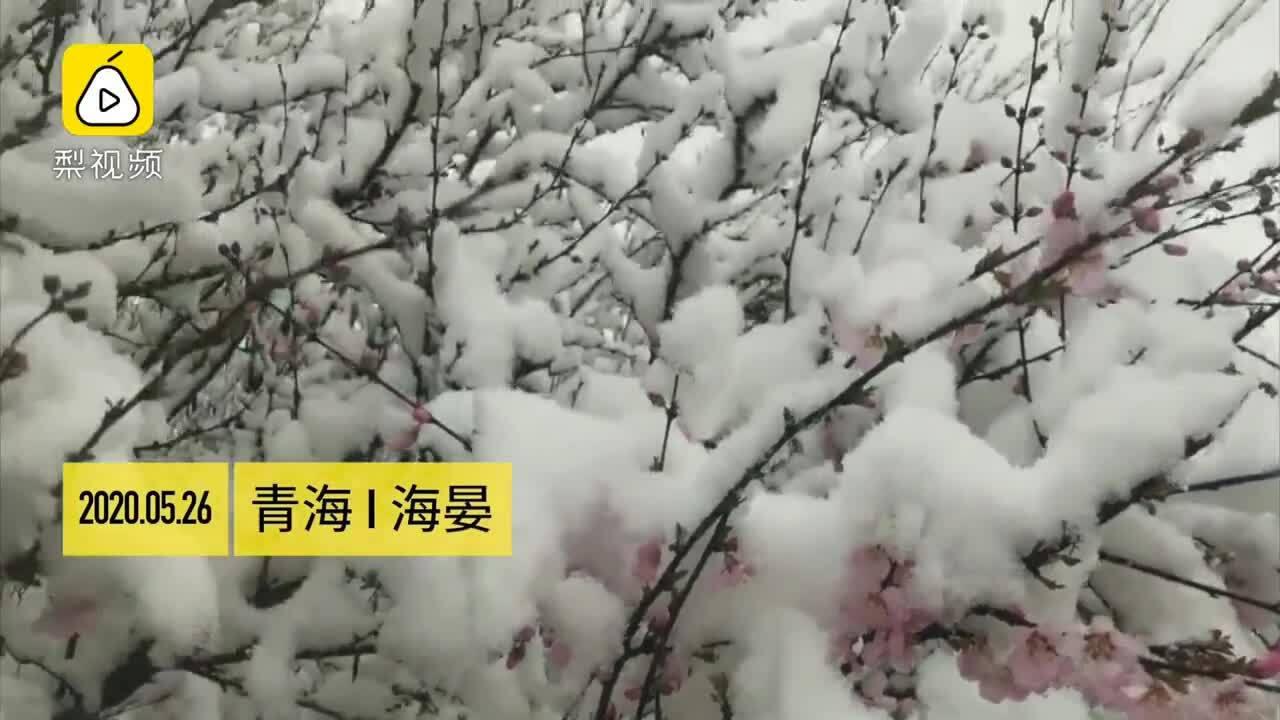 Tuyết rơi dày ở Trung Quốc giữa hè