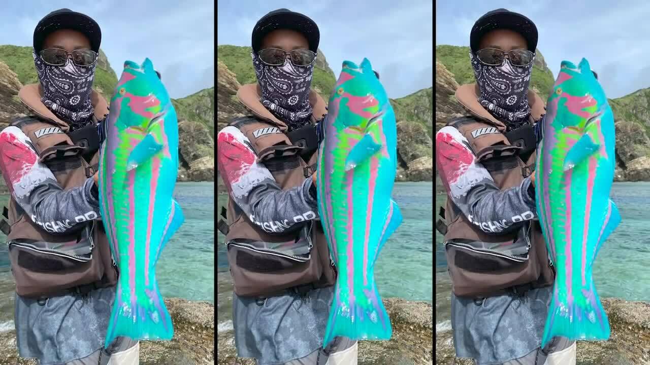 Con cá có màu sắc như trong thế giới 'Avatar'